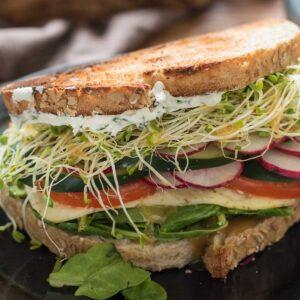 best-veggie-sandwich